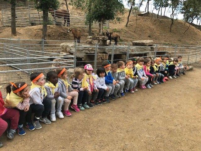 Alumnes d'Educació Infantil 3 i 4 anys al Xaragall