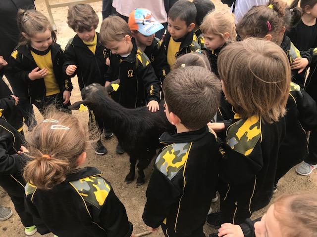 Gaudint d'un dia de natura a la granja-escola de St. Maria de Palautordera. Educació Infantil 3 anys.