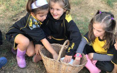 Educació Infantil 5 anys gaudeix d'un dia envoltat de natura a Can Turró! Sta. Maria de Palautordera.
