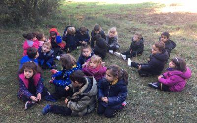 Educació Infantil 4 anys. Una jornada al bosc. Sant Martí de Centelles.